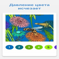 Paint By Number: Free Coloring Book & Puzzle Game