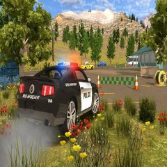 Police Car Chase: Cop Simulator