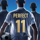 Perfect Soccer